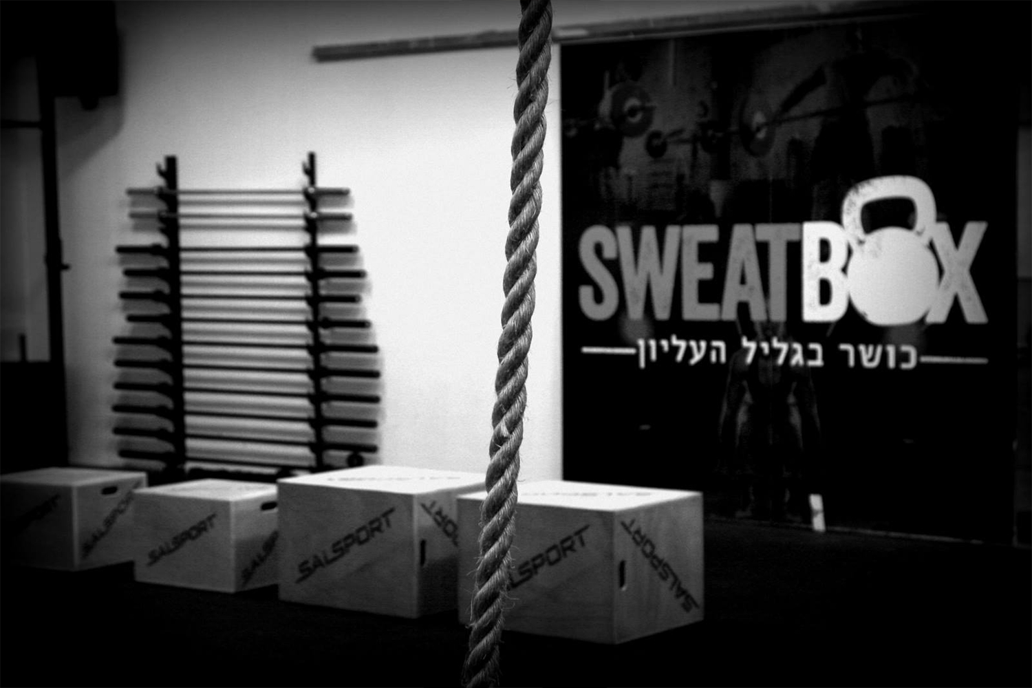 logo_sweat