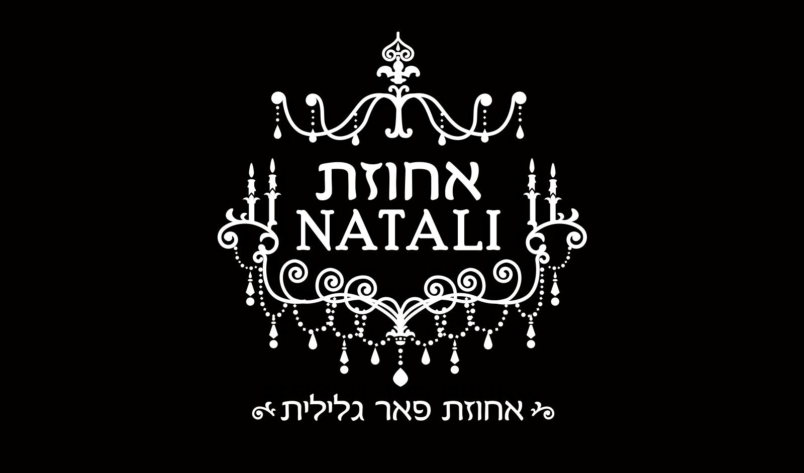 עיצוב לוגו לצימר יוקרה